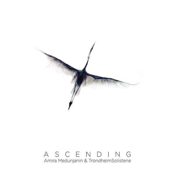 Ascending album cover