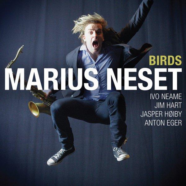 Birds album cover