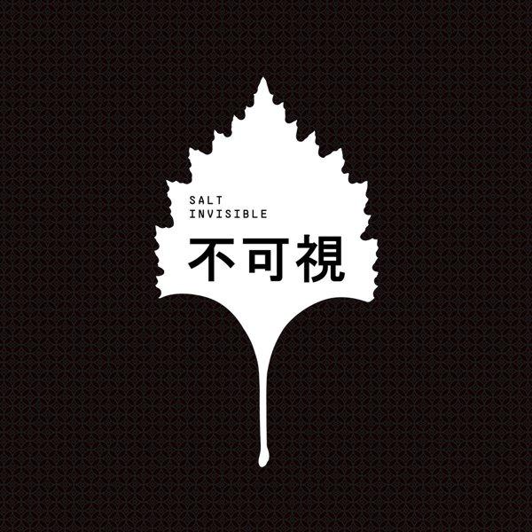 Invisible album cover