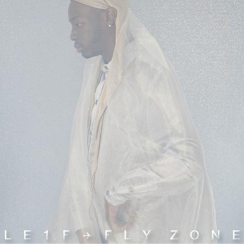 Fly Zone album cover