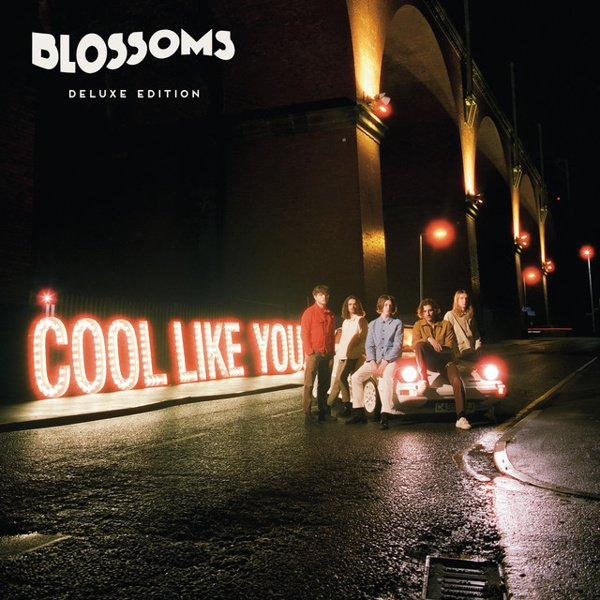 Cool like You album cover