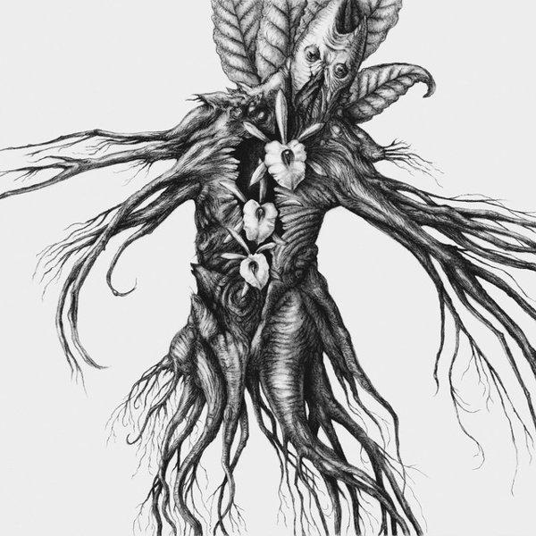 IV: Mandragora album cover