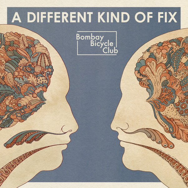 A  Different Kind of Fix album cover