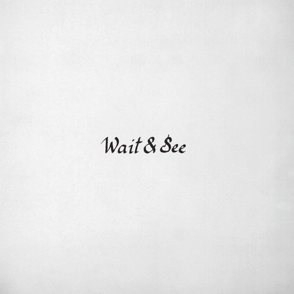 Wait & See album cover