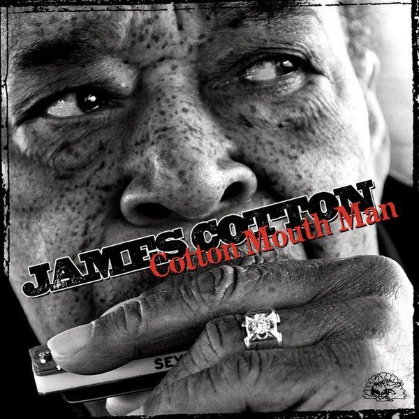 Cotton Mouth Man album cover