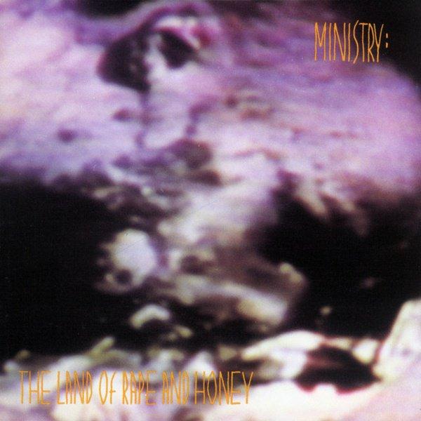 The Land of Rape and Honey album cover
