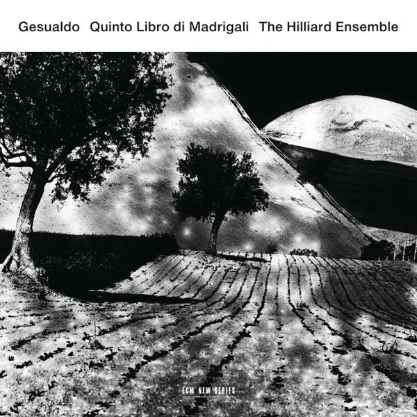 Carlo Gesualdo: Quinto Libro di Madrigali album cover