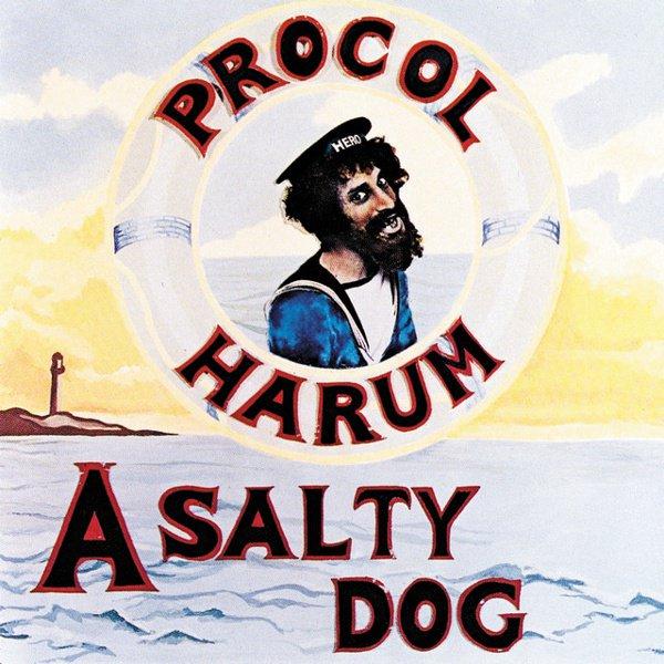 A Salty Dog album cover