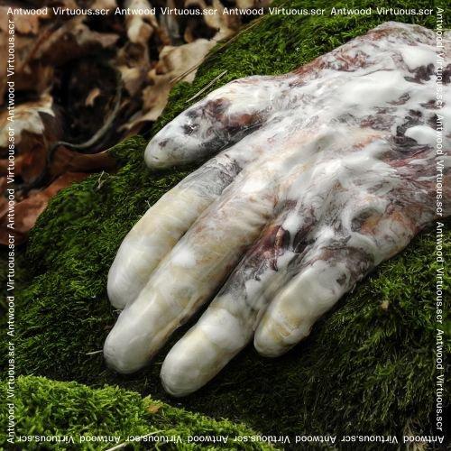 Virtuous.scr album cover