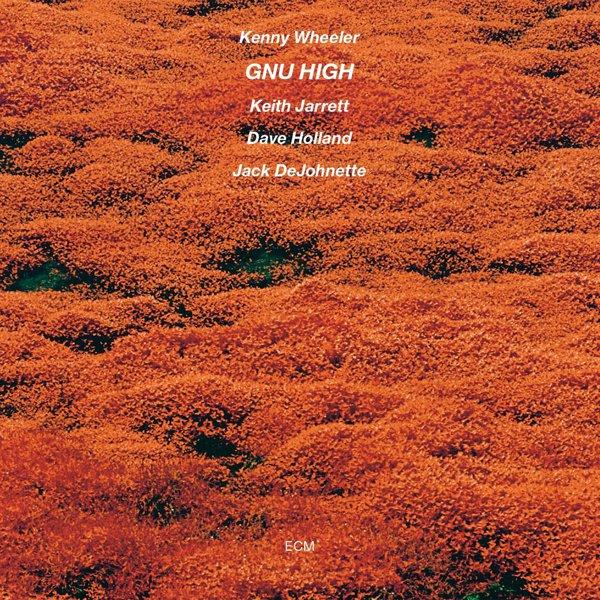 Gnu High album cover