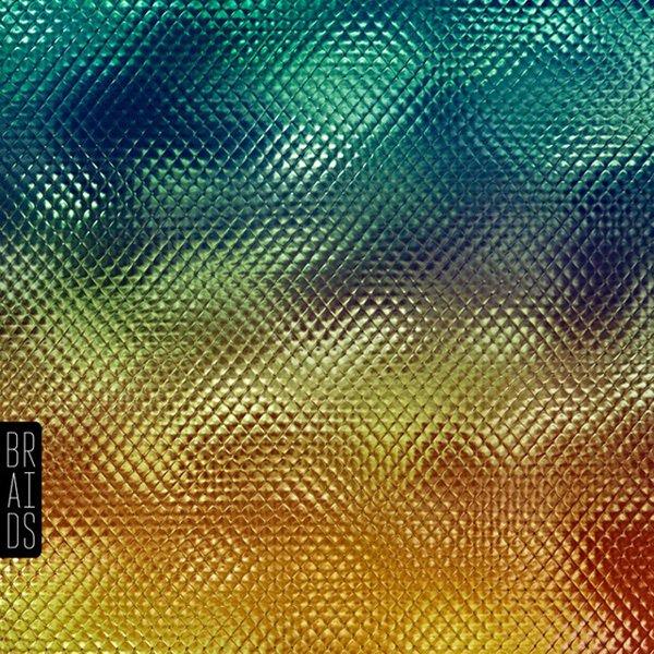 Native Speaker album cover